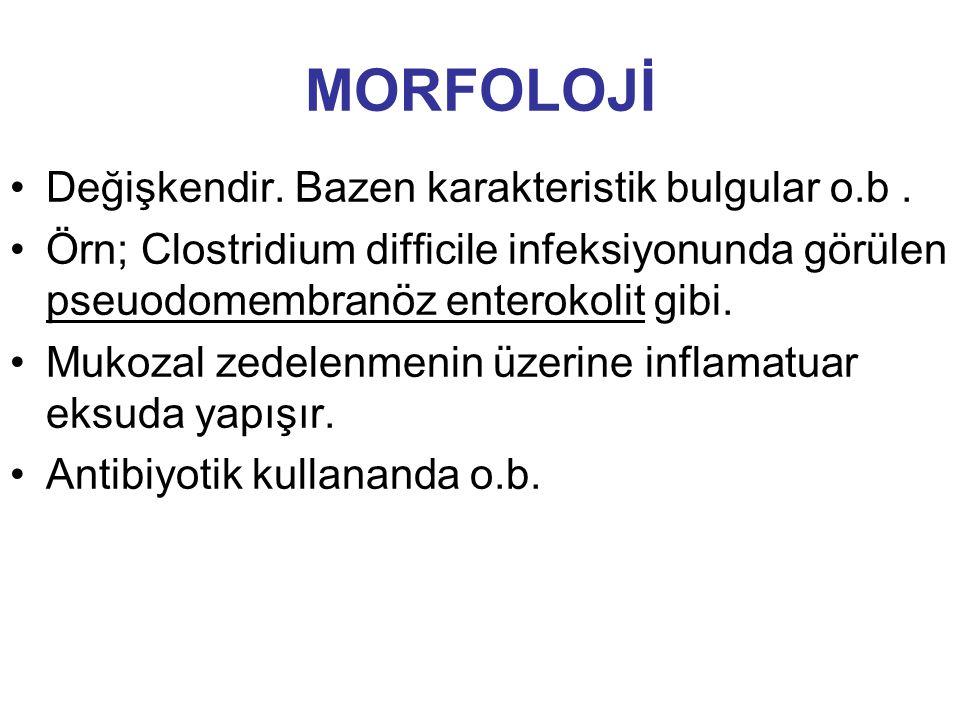 Değişkendir. Bazen karakteristik bulgular o.b. Örn; Clostridium difficile infeksiyonunda görülen pseuodomembranöz enterokolit gibi. Mukozal zedelenmen