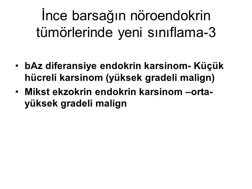 İnce barsağın nöroendokrin tümörlerinde yeni sınıflama-3 bAz diferansiye endokrin karsinom- Küçük hücreli karsinom (yüksek gradeli malign) Mikst ekzok