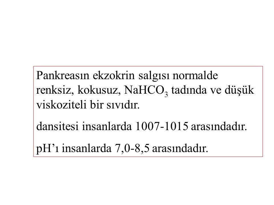 Pankreasın ekzokrin salgısı normalde renksiz, kokusuz, NaHCO 3 tadında ve düşük viskoziteli bir sıvıdır.