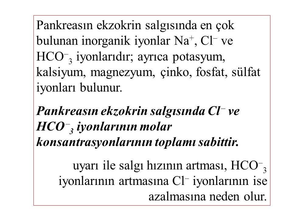 Pankreasın ekzokrin salgısında en çok bulunan inorganik iyonlar Na +, Cl  ve HCO  3 iyonlarıdır; ayrıca potasyum, kalsiyum, magnezyum, çinko, fosfat, sülfat iyonları bulunur.