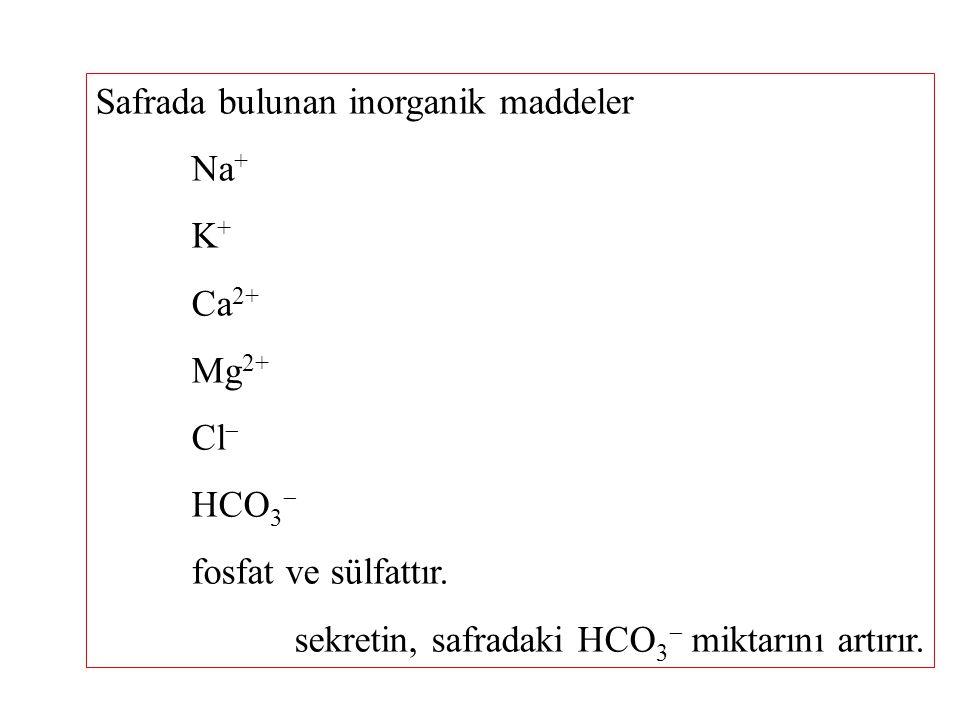 Safrada bulunan inorganik maddeler Na + K + Ca 2+ Mg 2+ Cl  HCO 3  fosfat ve sülfattır.