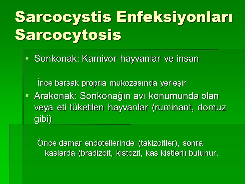Sarcocystis Enfeksiyonları Sarcocytosis  Sonkonak: Karnivor hayvanlar ve insan İnce barsak propria mukozasında yerleşir  Arakonak: Sonkonağın avı ko
