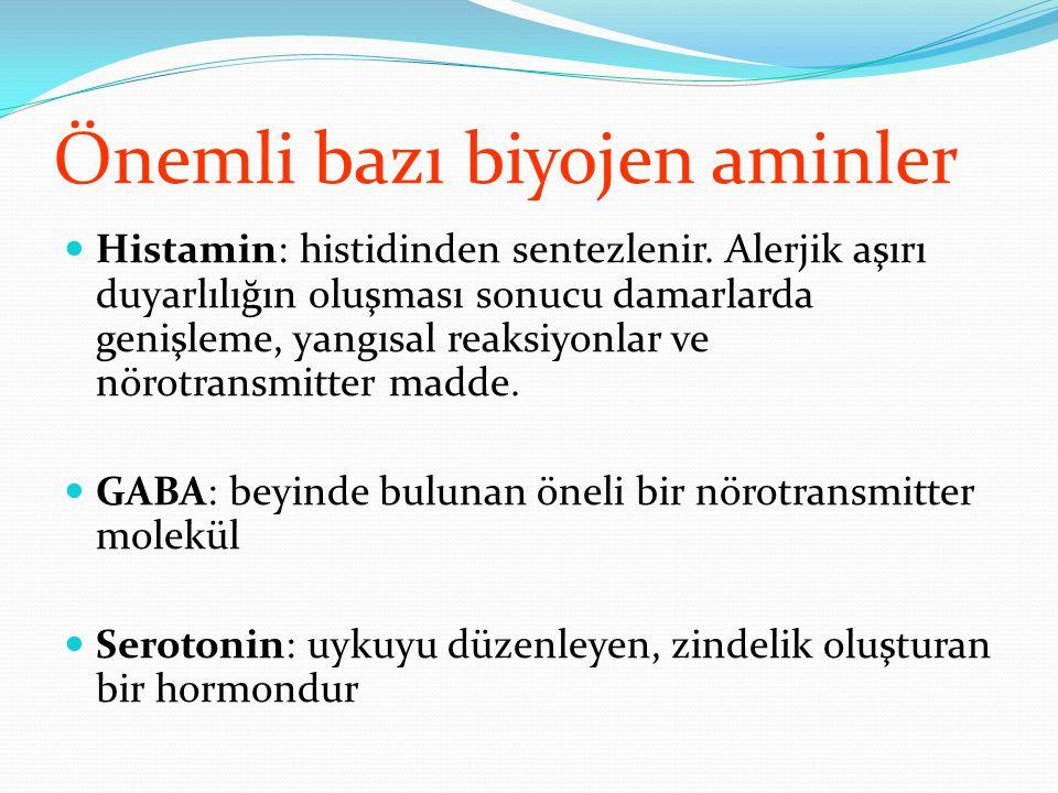Önemli bazı biyojen aminler Histamin: histidinden sentezlenir. Alerjik aşırı duyarlılığın oluşması sonucu damarlarda genişleme, yangısal reaksiyonlar