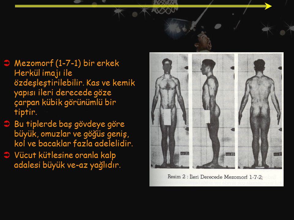  Mezomorf (1-7-1) bir erkek Herkül imajı ile özdeşleştirilebilir. Kas ve kemik yapısı ileri derecede göze çarpan kübik görünümlü bir tiptir.  Bu tip