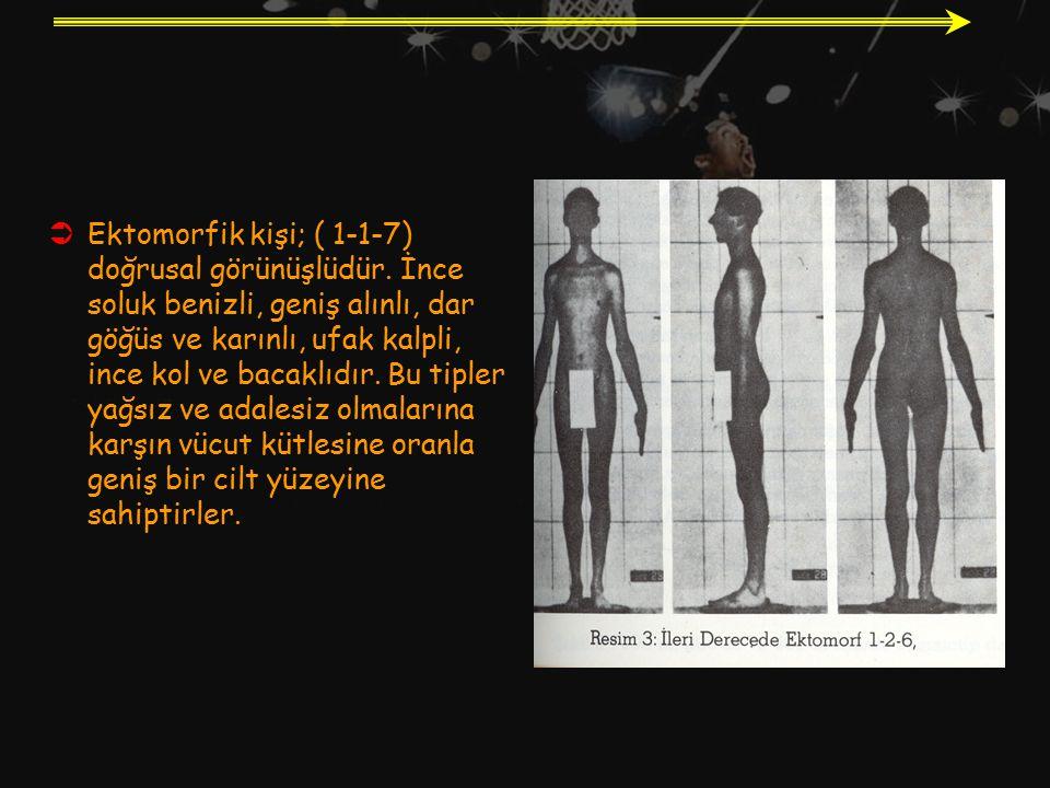  Ektomorfik kişi; ( 1-1-7) doğrusal görünüşlüdür. İnce soluk benizli, geniş alınlı, dar göğüs ve karınlı, ufak kalpli, ince kol ve bacaklıdır. Bu tip