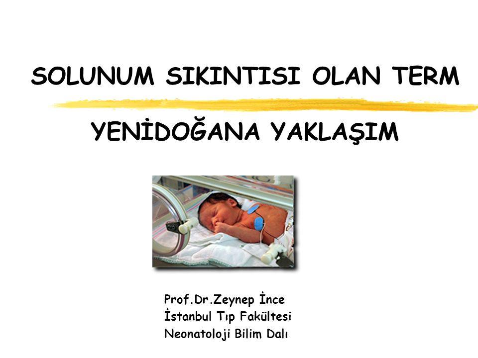 SOLUNUM SIKINTISI OLAN TERM YENİDOĞANA YAKLAŞIM Prof.Dr.Zeynep İnce İstanbul Tıp Fakültesi Neonatoloji Bilim Dalı