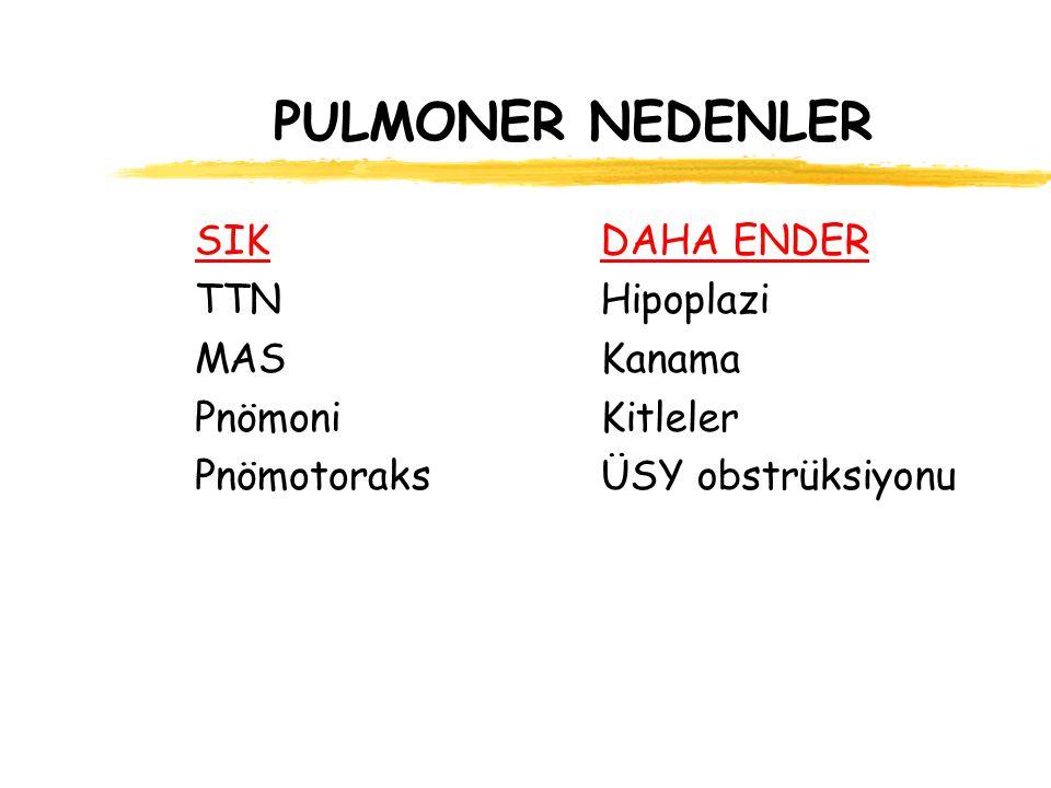 PULMONER NEDENLER SIK TTN MAS Pnömoni Pnömotoraks DAHA ENDER Hipoplazi Kanama Kitleler ÜSY obstrüksiyonu