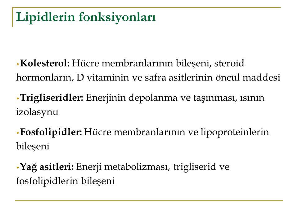 Lipidlerin fonksiyonları Kolesterol: Hücre membranlarının bileşeni, steroid hormonların, D vitaminin ve safra asitlerinin öncül maddesi Trigliseridler: Enerjinin depolanma ve taşınması, ısının izolasynu Fosfolipidler: Hücre membranlarının ve lipoproteinlerin bileşeni Yağ asitleri: Enerji metabolizması, trigliserid ve fosfolipidlerin bileşeni