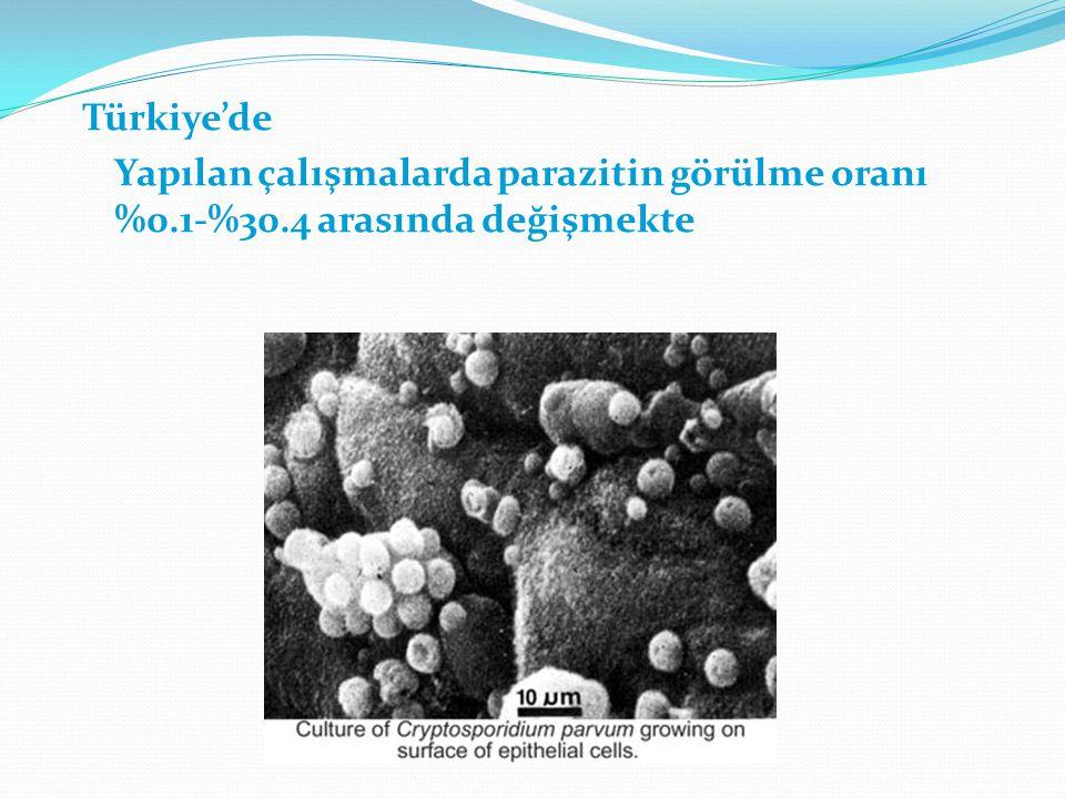 Türkiye'de Yapılan çalışmalarda parazitin görülme oranı %0.1-%30.4 arasında değişmekte