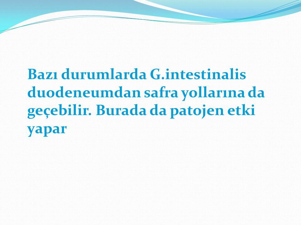 Bazı durumlarda G.intestinalis duodeneumdan safra yollarına da geçebilir.