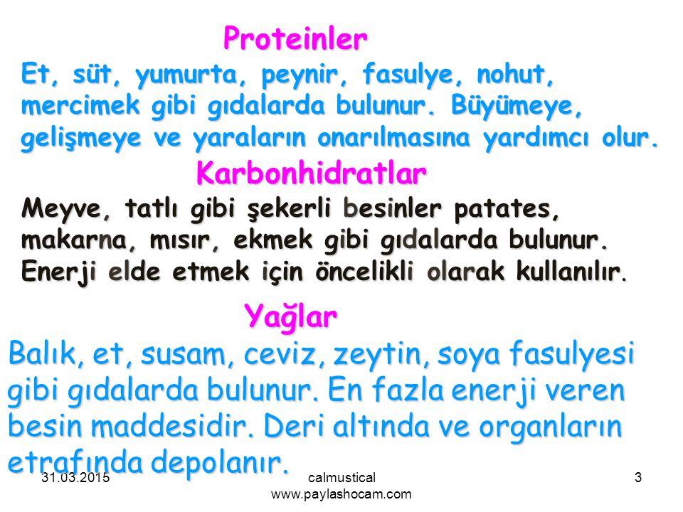 31.03.2015calmustical www.paylashocam.com 3 Yağlar Balık, et, susam, ceviz, zeytin, soya fasulyesi gibi gıdalarda bulunur. En fazla enerji veren besin