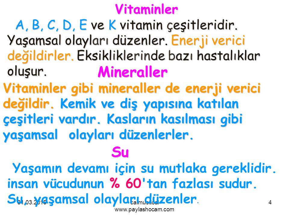 31.03.2015calmustical www.paylashocam.com 4Vitaminler A, B, C, D, E ve K vitamin çeşitleridir. Yaşamsal olayları düzenler. Enerji verici değildirler.