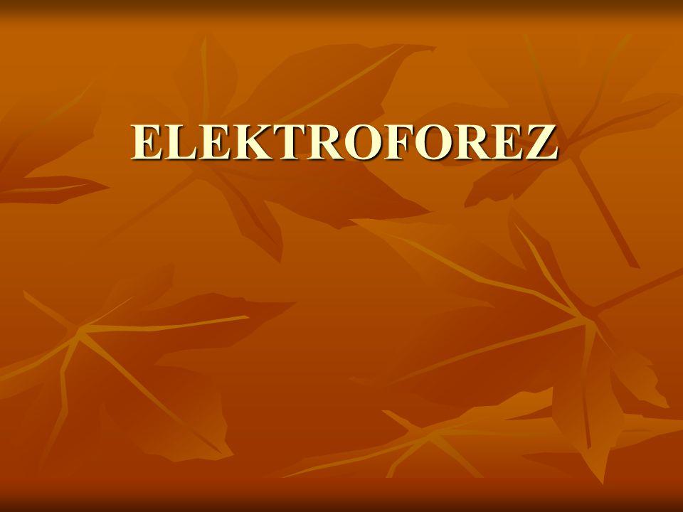 ELEKTROFOREZ