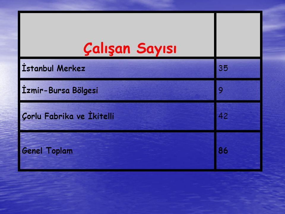 Çalışan Sayısı İstanbul Merkez35 İzmir-Bursa Bölgesi9 Çorlu Fabrika ve İkitelli42 Genel Toplam86