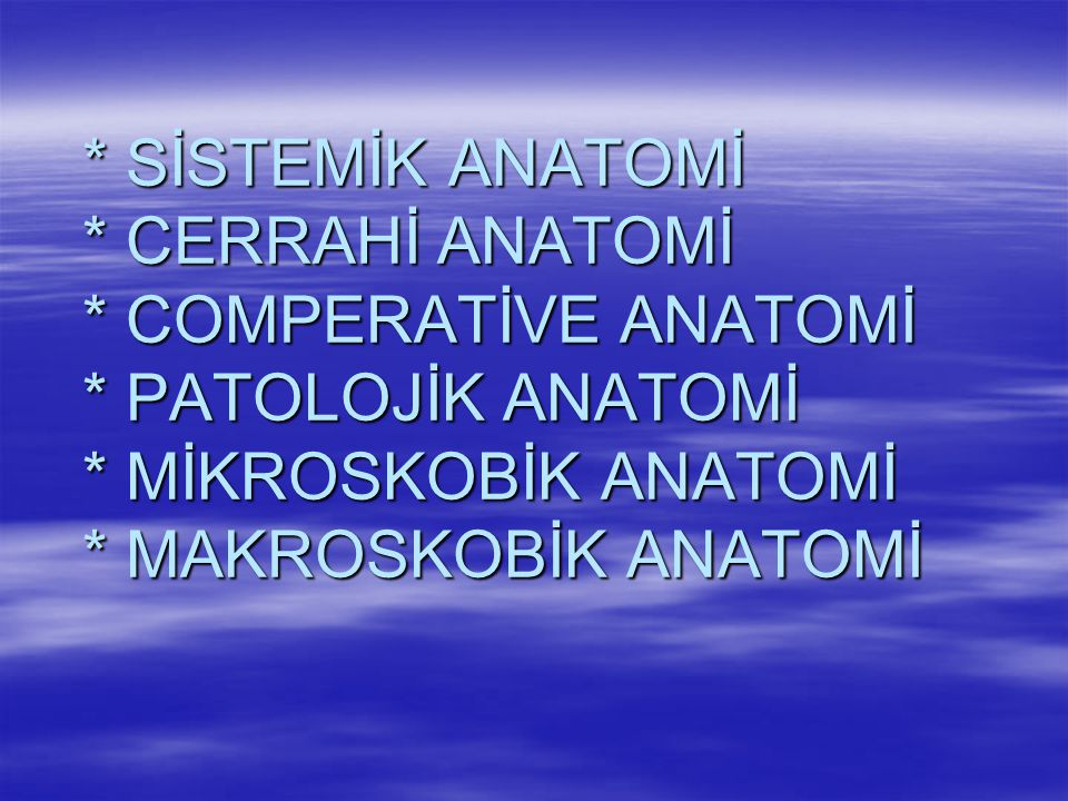 MERKEZİ SİNİR SİSTEMİ BEYİN (CEREBRUM) BEYİNCİK (CEREBELLUM) OMURİLİK (MEDULLA SPİNALİS) M.S.S.