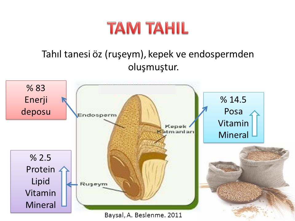Tahıl tanesi öz (ruşeym), kepek ve endospermden oluşmuştur. % 83 Enerji deposu % 83 Enerji deposu % 2.5 Protein Lipid Vitamin Mineral % 2.5 Protein Li