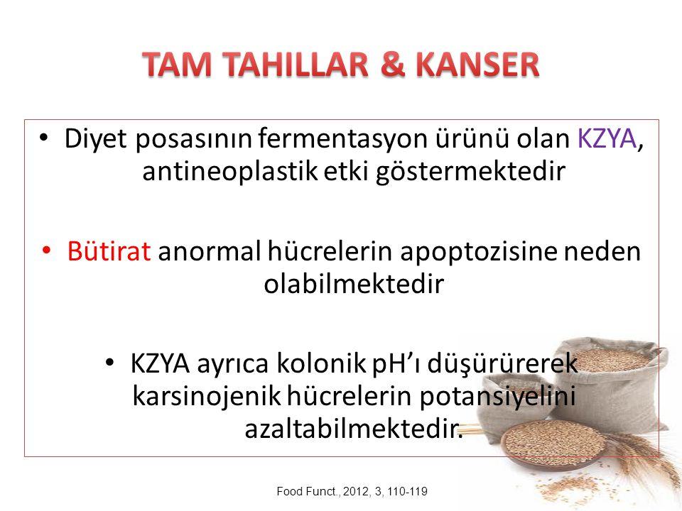 Diyet posasının fermentasyon ürünü olan KZYA, antineoplastik etki göstermektedir Bütirat anormal hücrelerin apoptozisine neden olabilmektedir KZYA ayr