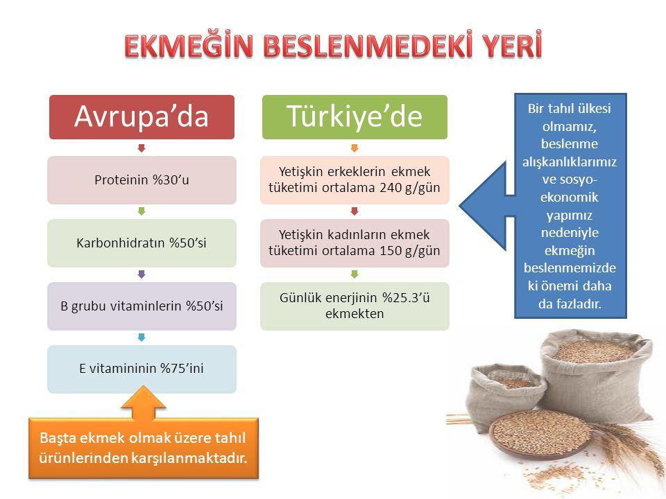 Avrupa'da Proteinin %30'uKarbonhidratın %50'siB grubu vitaminlerin %50'siE vitamininin %75'ini Türkiye'de Yetişkin erkeklerin ekmek tüketimi ortalama