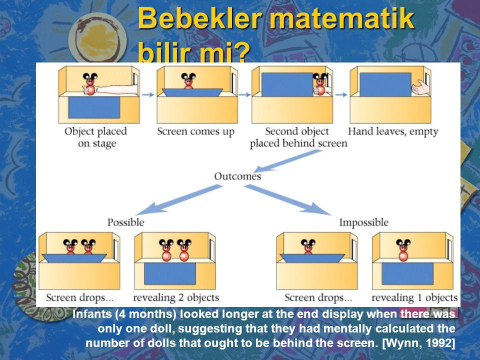 Bebekler matematik bilir mi? Infants (4 months) looked longer at the end display when there was only one doll, suggesting that they had mentally calcu