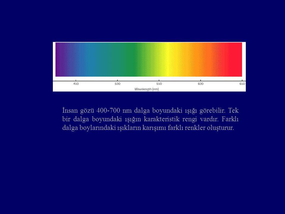 İnsan gözü 400-700 nm dalga boyundaki ışığı görebilir. Tek bir dalga boyundaki ışığın karakteristik rengi vardır. Farklı dalga boylarındaki ışıkların