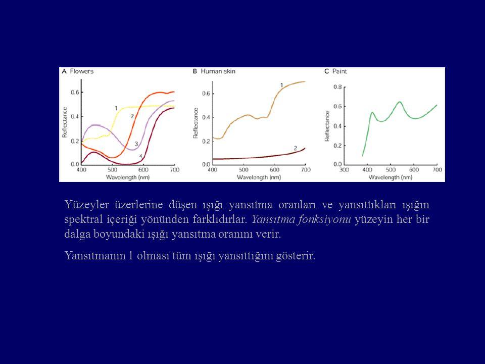 Yüzeyler üzerlerine düşen ışığı yansıtma oranları ve yansıttıkları ışığın spektral içeriği yönünden farklıdırlar. Yansıtma fonksiyonu yüzeyin her bir