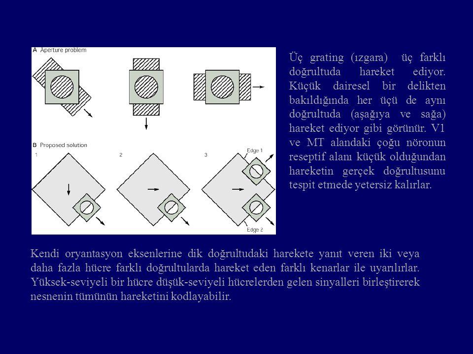 Üç grating (ızgara) üç farklı doğrultuda hareket ediyor. Küçük dairesel bir delikten bakıldığında her üçü de aynı doğrultuda (aşağıya ve sağa) hareket