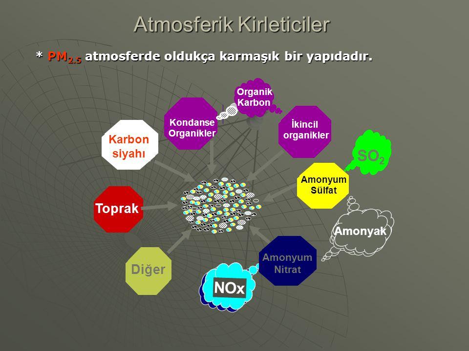 * PM 2.5 atmosferde oldukça karmaşık bir yapıdadır. Karbon siyahı Diğer Amonyum Nitrat NOx Amonyum Sülfat SO 2 İkincil organikler Organik Karbon Amony