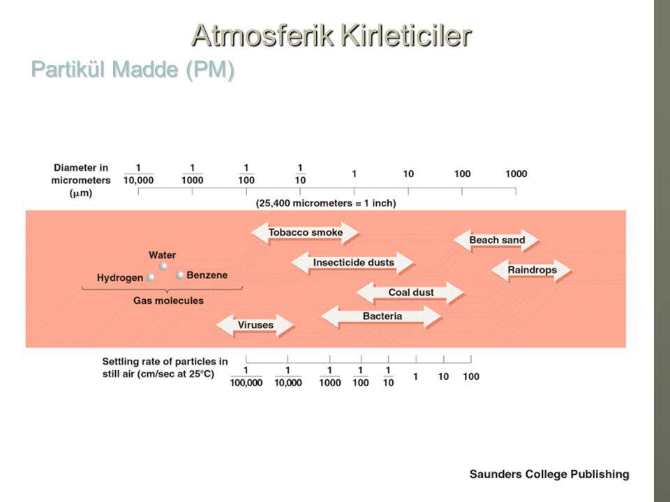 İnsan Saçı (70 µm çap) Saç kesiti (70  m) PM 2.5 (2.5 µm) PM 2.5 (2.5 µm) PM 10 ( 10µm ) PM 10 ( 10µm ) Atmosferik Kirleticiler Partikül Madde (PM)