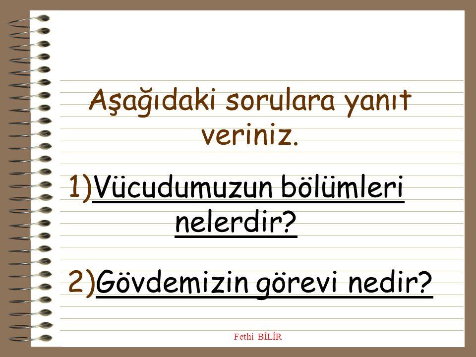2)Aşağıdakilerden hangisi,başımızdaki organlarımızdan biri değildir? A) A) beyin B) göz C) mide