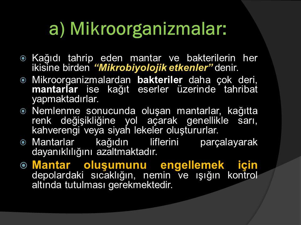 """a) Mikroorganizmalar:  Kağıdı tahrip eden mantar ve bakterilerin her ikisine birden """"Mikrobiyolojik etkenler"""" denir.  Mikroorganizmalardan bakterile"""