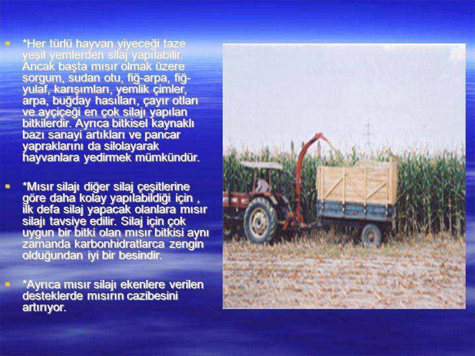  *Her türlü hayvan yiyeceği taze yeşil yemlerden silaj yapılabilir. Ancak başta mısır olmak üzere sorgum, sudan otu, fiğ-arpa, fiğ- yulaf, karışımlar