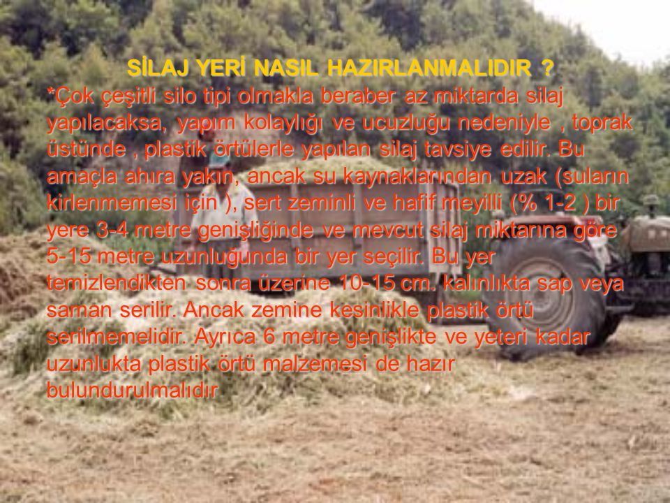 SİLAJ YERİ NASIL HAZIRLANMALIDIR ? *Çok çeşitli silo tipi olmakla beraber az miktarda silaj yapılacaksa, yapım kolaylığı ve ucuzluğu nedeniyle, toprak