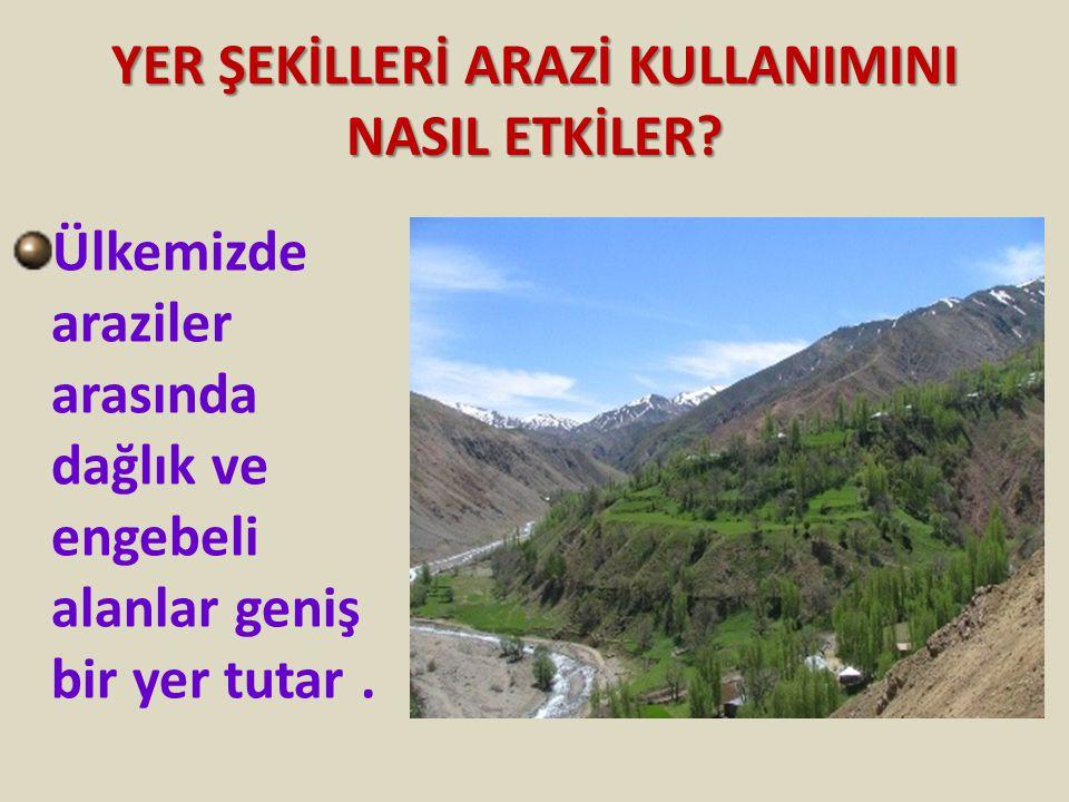 YER ŞEKİLLERİ ARAZİ KULLANIMINI NASIL ETKİLER? Ülkemizde araziler arasında dağlık ve engebeli alanlar geniş bir yer tutar.
