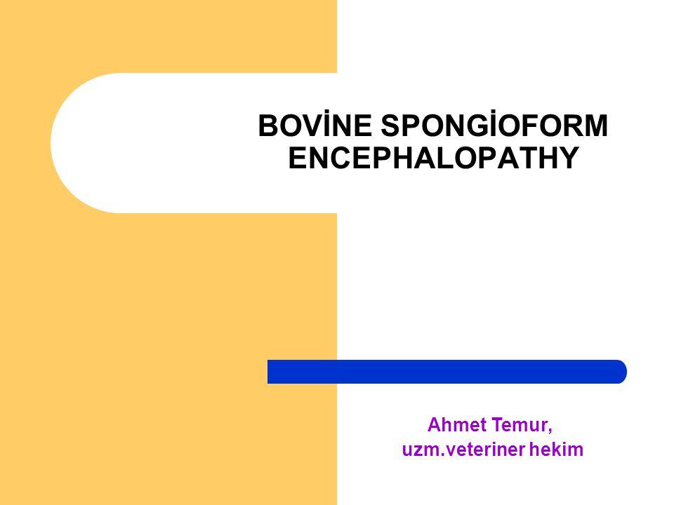 BOVİNE SPONGİOFORM ENCEPHALOPATHY Ahmet Temur, uzm.veteriner hekim