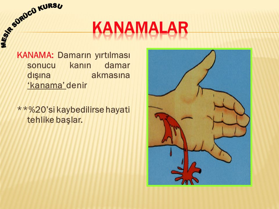 KANAMA: Damarın yırtılması sonucu kanın damar dışına akmasına 'kanama' denir **%20'si kaybedilirse hayati tehlike başlar.