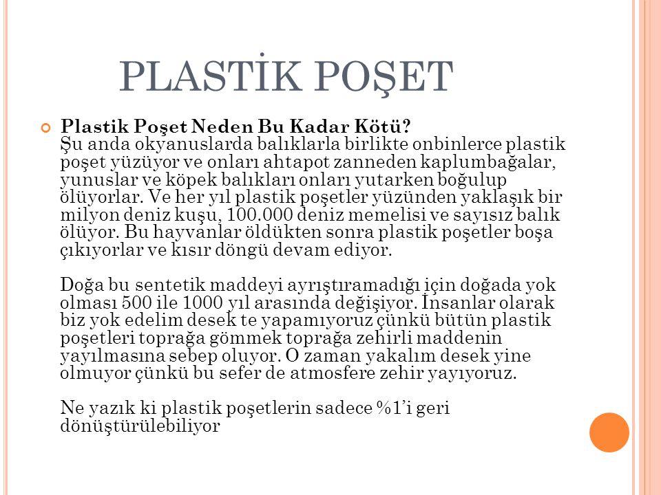 Plastik Poşet Neden Bu Kadar Kötü.