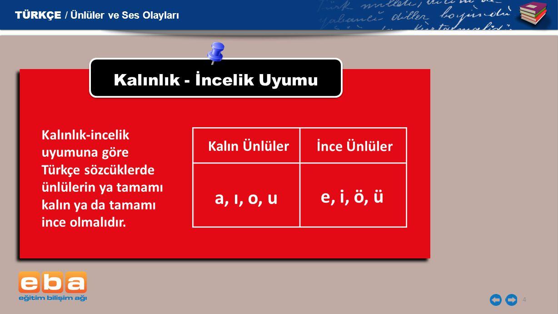 4 Kalınlık - İncelik Uyumu Kalınlık-incelik uyumuna göre Türkçe sözcüklerde ünlülerin ya tamamı kalın ya da tamamı ince olmalıdır. Kalın Ünlüler İnce