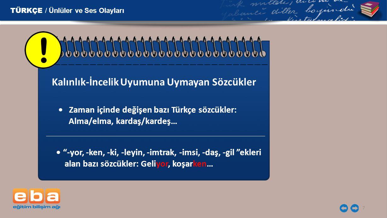 """7 Zaman içinde değişen bazı Türkçe sözcükler: Alma/elma, kardaş/kardeş… """"-yor, -ken, -ki, -leyin, -imtrak, -imsi, -daş, -gil """"ekleri alan bazı sözcükl"""