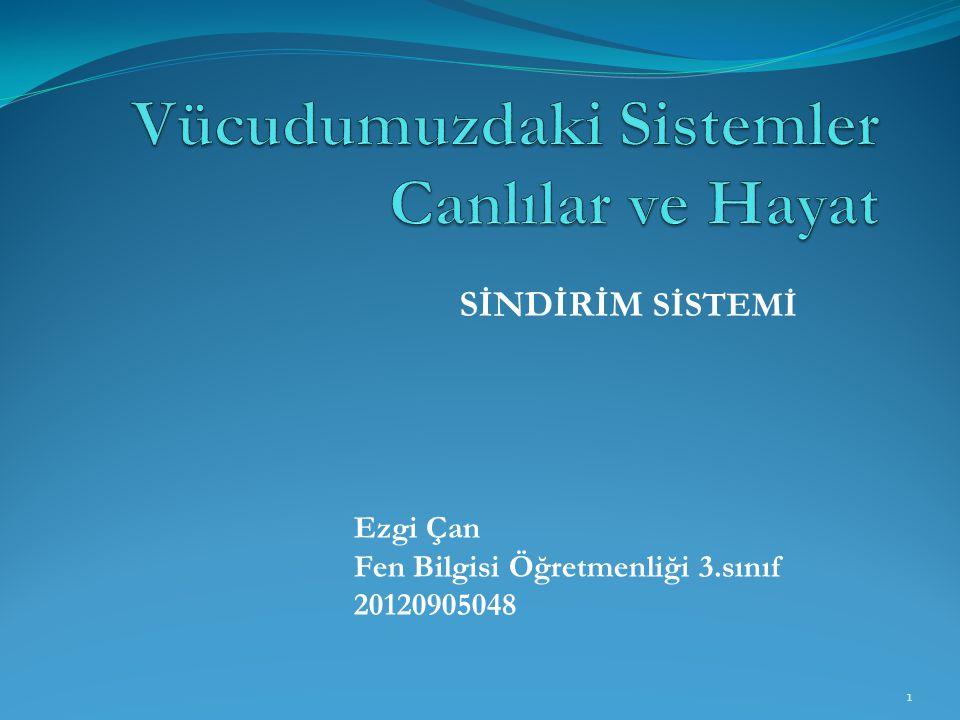 SİNDİRİM SİSTEMİ Ezgi Çan Fen Bilgisi Öğretmenliği 3.sınıf 20120905048 1