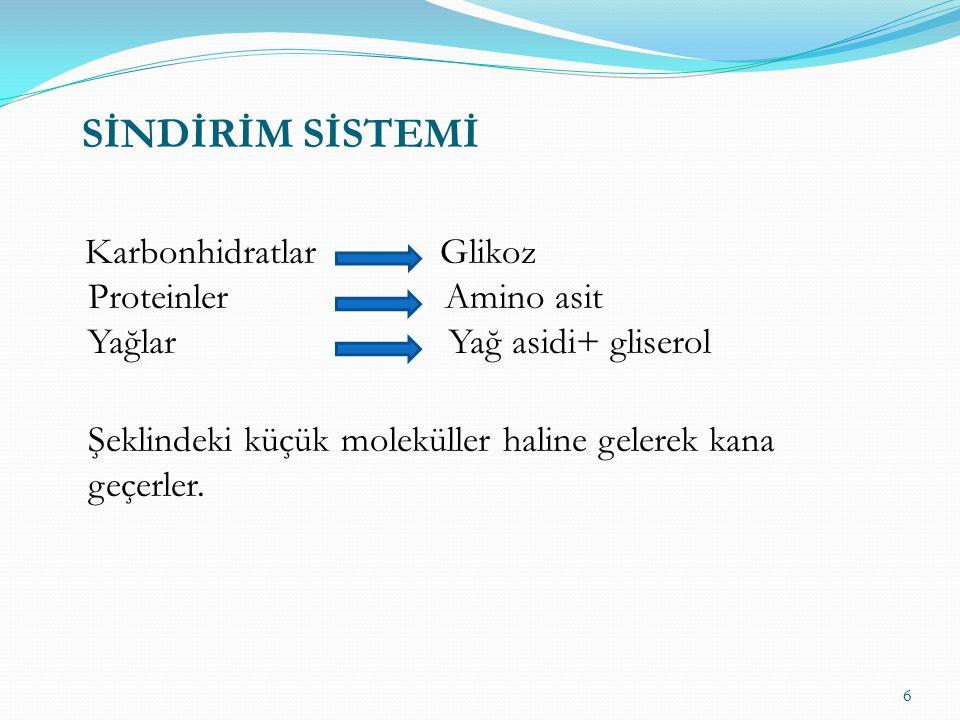 Karbonhidratlar Glikoz Proteinler Amino asit Yağlar Yağ asidi+ gliserol Şeklindeki küçük moleküller haline gelerek kana geçerler.