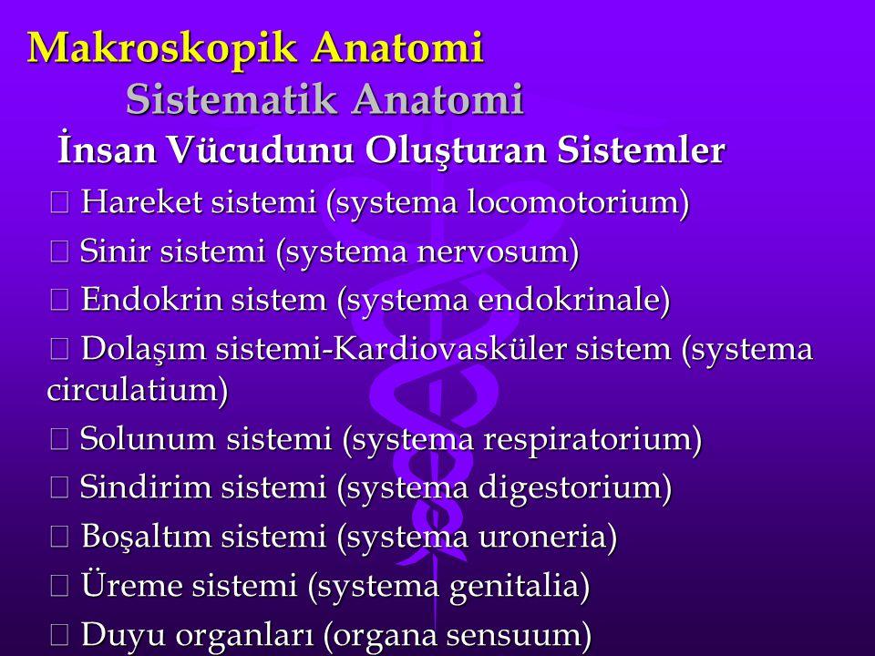 Makroskopik Anatomi Sistematik Anatomi İnsan Vücudunu Oluşturan Sistemler İnsan Vücudunu Oluşturan Sistemler  Hareket sistemi (systema locomotorium)  Sinir sistemi (systema nervosum)  Endokrin sistem (systema endokrinale)  Dolaşım sistemi-Kardiovasküler sistem (systema circulatium)  Solunum sistemi (systema respiratorium)  Sindirim sistemi (systema digestorium)  Boşaltım sistemi (systema uroneria)  Üreme sistemi (systema genitalia)  Duyu organları (organa sensuum)