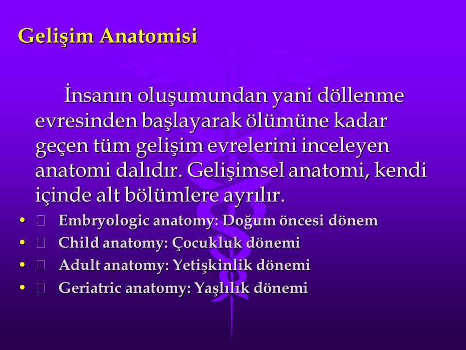 Gelişim Anatomisi İnsanın oluşumundan yani döllenme evresinden başlayarak ölümüne kadar geçen tüm gelişim evrelerini inceleyen anatomi dalıdır.