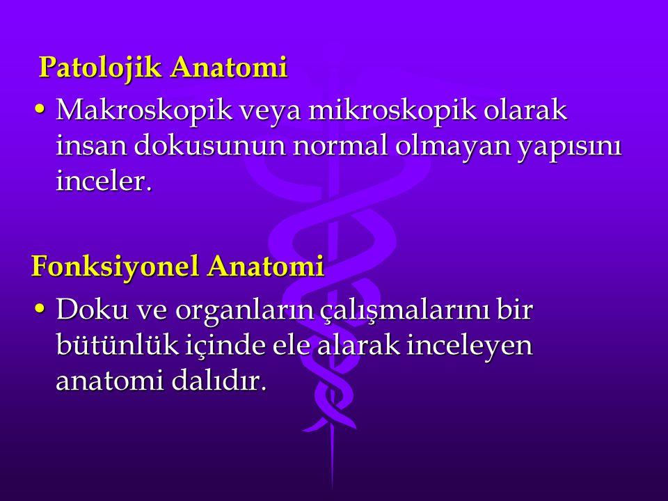 Patolojik Anatomi Patolojik Anatomi Makroskopik veya mikroskopik olarak insan dokusunun normal olmayan yapısını inceler.Makroskopik veya mikroskopik o