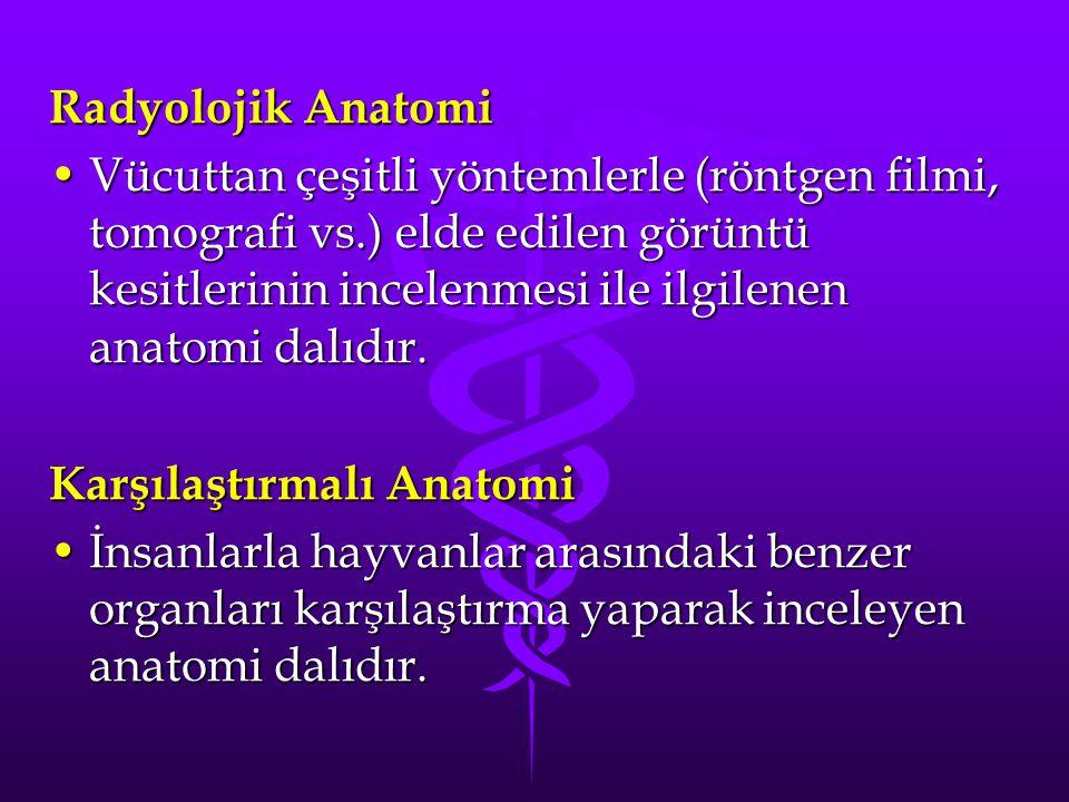 Radyolojik Anatomi Vücuttan çeşitli yöntemlerle (röntgen filmi, tomografi vs.) elde edilen görüntü kesitlerinin incelenmesi ile ilgilenen anatomi dalıdır.Vücuttan çeşitli yöntemlerle (röntgen filmi, tomografi vs.) elde edilen görüntü kesitlerinin incelenmesi ile ilgilenen anatomi dalıdır.