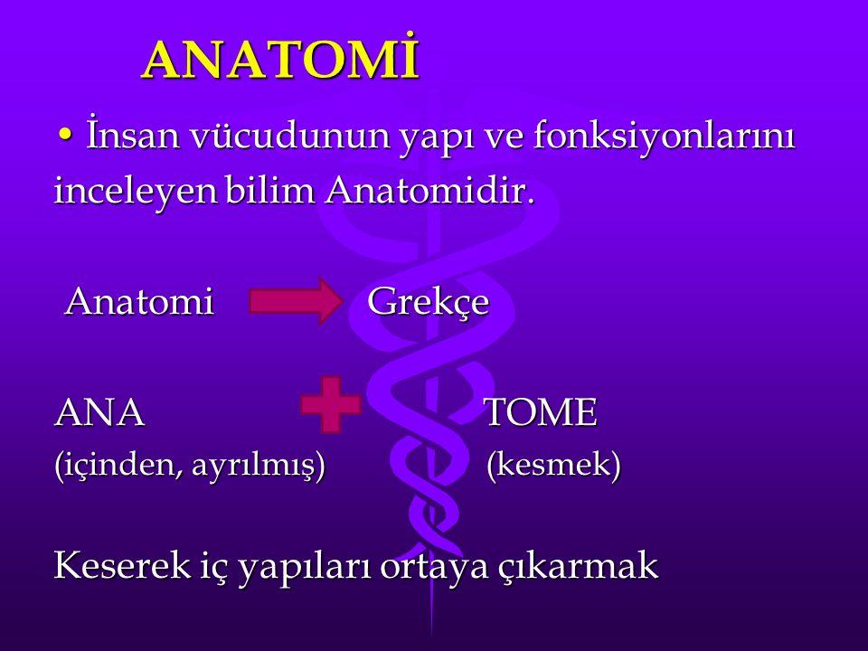 Anatominin Tanımı: İnsan vücudunun normal şeklini ve yapısını, vücudu oluşturan yapı ve organların birbirleri ile olan ilişkilerini ve bu yapıların çalışma seklini inceleyen bilim dalıdır.