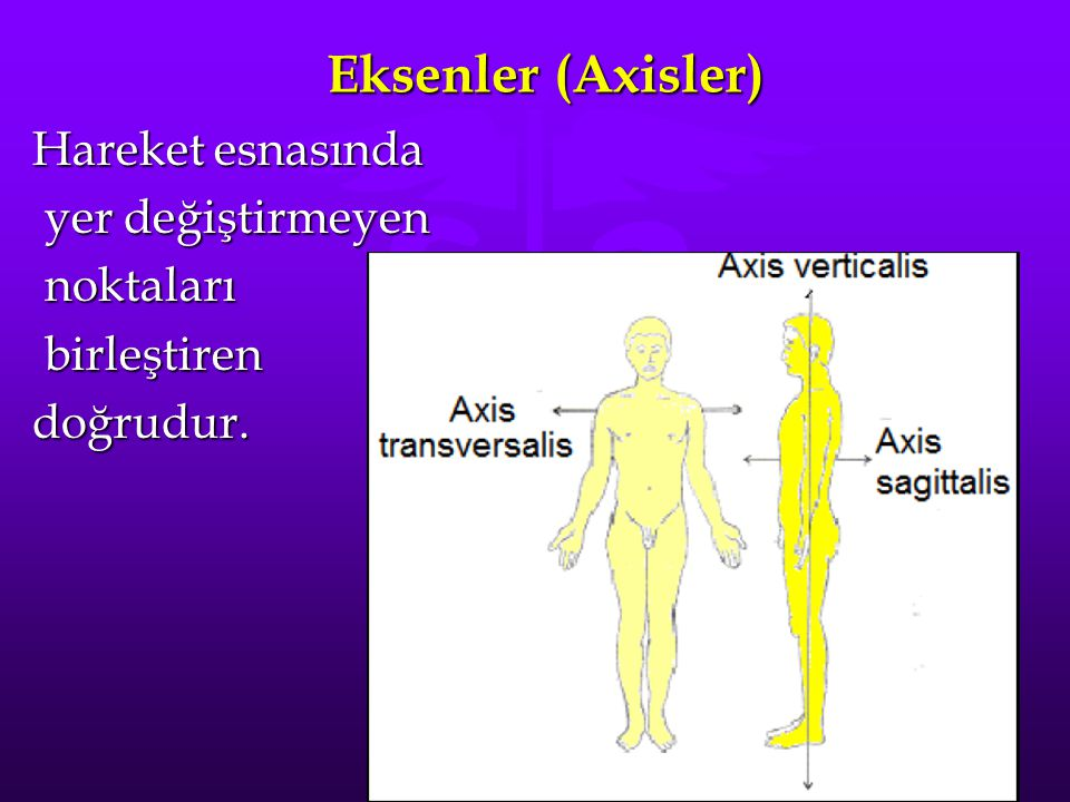 Eksenler (Axisler) Hareket esnasında yer değiştirmeyen yer değiştirmeyen noktaları noktaları birleştiren birleştirendoğrudur.