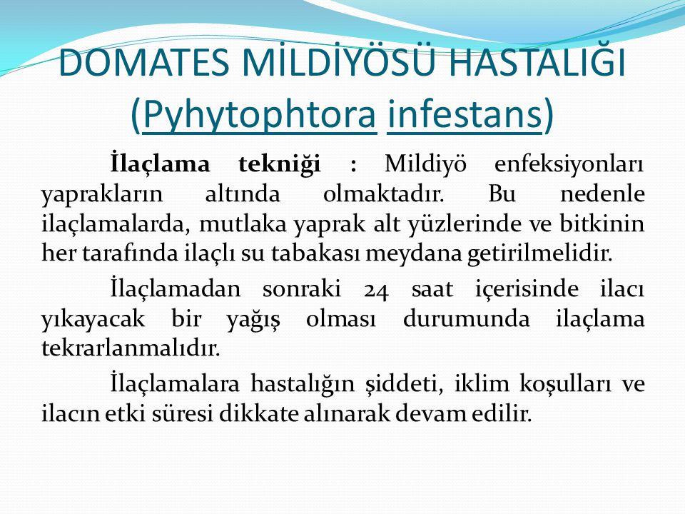 DOMATES MİLDİYÖSÜ HASTALIĞI (Pyhytophtora infestans) İlaçlama tekniği : Mildiyö enfeksiyonları yaprakların altında olmaktadır. Bu nedenle ilaçlamalard