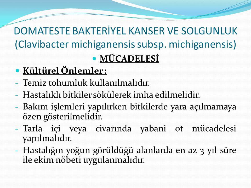 DOMATESTE BAKTERİYEL KANSER VE SOLGUNLUK (Clavibacter michiganensis subsp. michiganensis) MÜCADELESİ Kültürel Önlemler : - Temiz tohumluk kullanılmalı