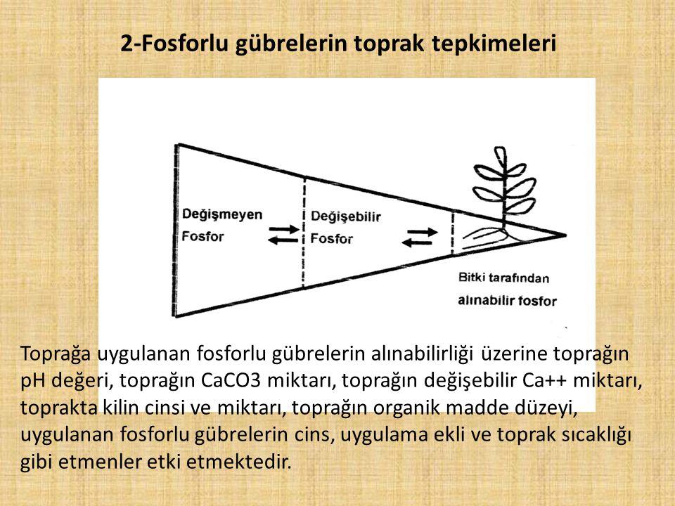 2-Fosforlu gübrelerin toprak tepkimeleri Toprağa uygulanan fosforlu gübrelerin alınabilirliği üzerine toprağın pH değeri, toprağın CaCO3 miktarı, topr