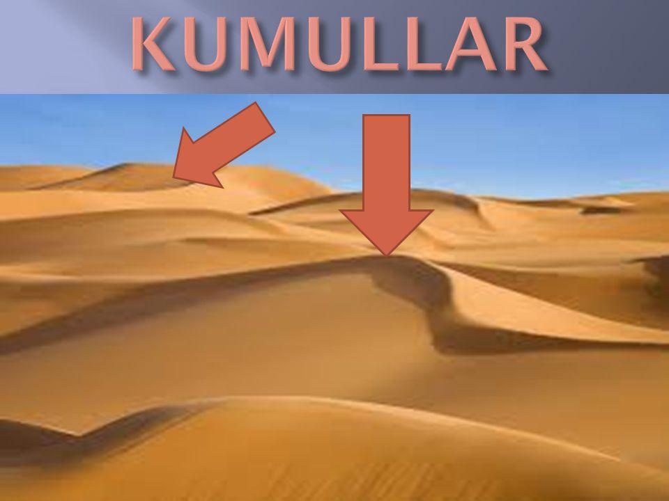  Dönenceler Arsında Dır.  Kuzey Afrika,Avusturalya,Arabistan Gibi Yerlerde Görülür.  Yıllık Yağış Miktarı 100mm nin Altında dır.  Gece-gündüz Aras